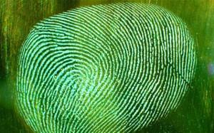 fingerprint_2680093b